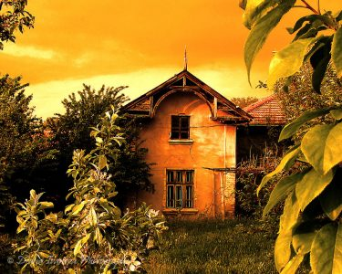 old house, garden, village, roof, house, leafs, windows, old windows, grass, yellow, art, art photography, paint, picture, retro style