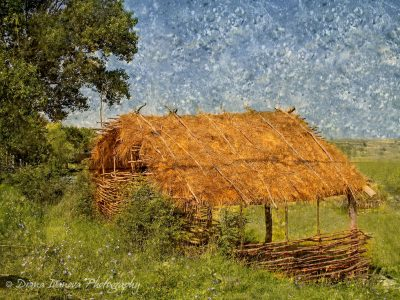 cottage, roof, Thatch roof, wood house, wood, landscape, picture, paint, art, photo, collage, photo art, tree, russian style, brocken, wooden fence, grass, old